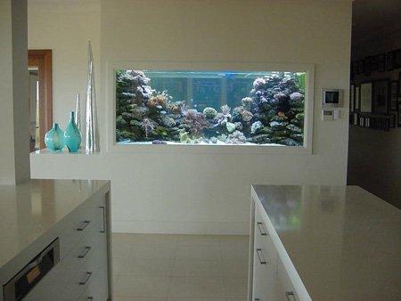 заказной аквариум