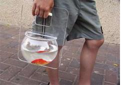 переезд аквариума